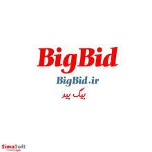 دامنه بیگ بید BigBid.ir